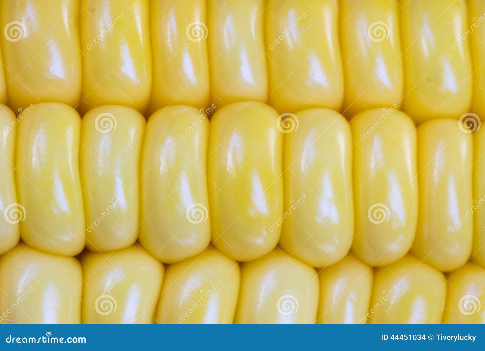 Kukurydzani nasiona
