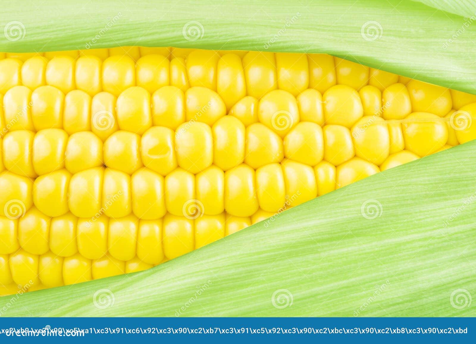 Kukurydzany cob
