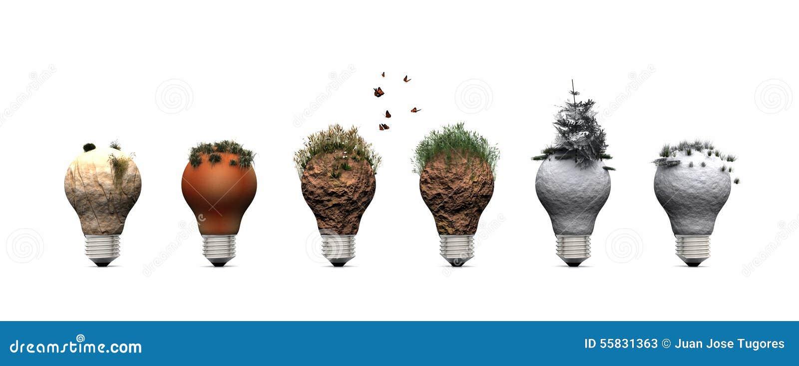 Kula och ekosystem