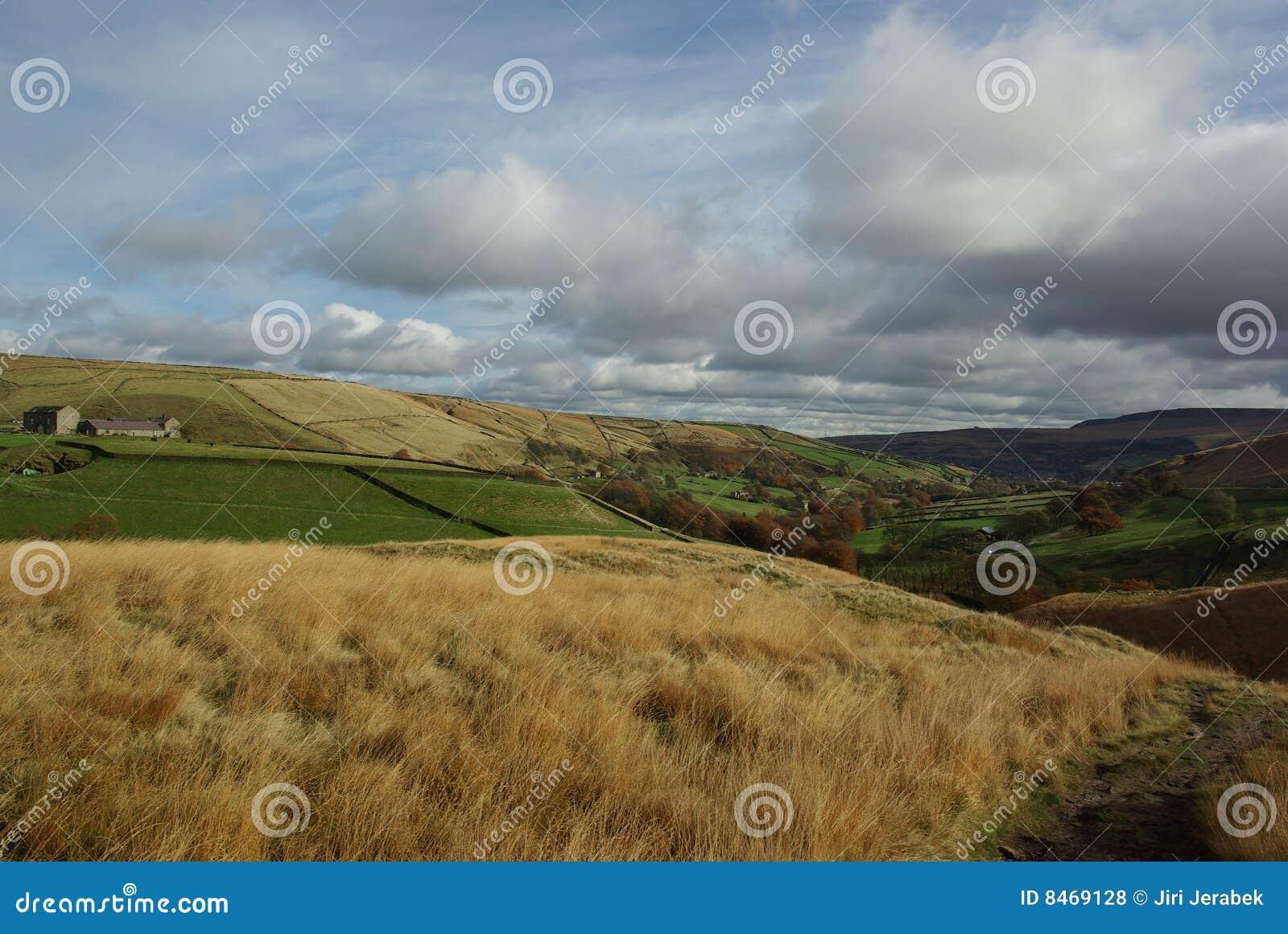 Kullhedwalleys yorkshire