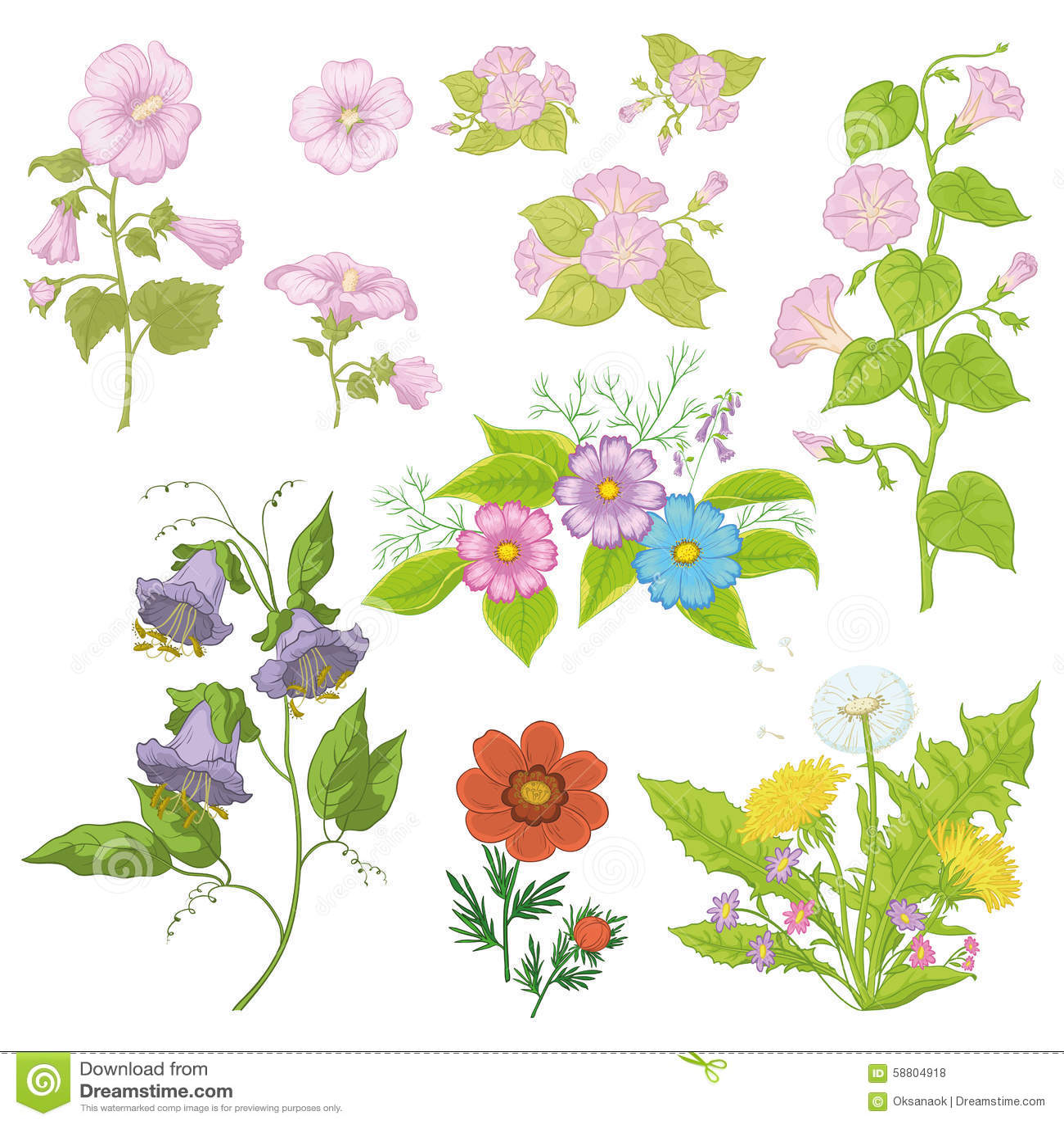 Kultywujący kwiaty, set