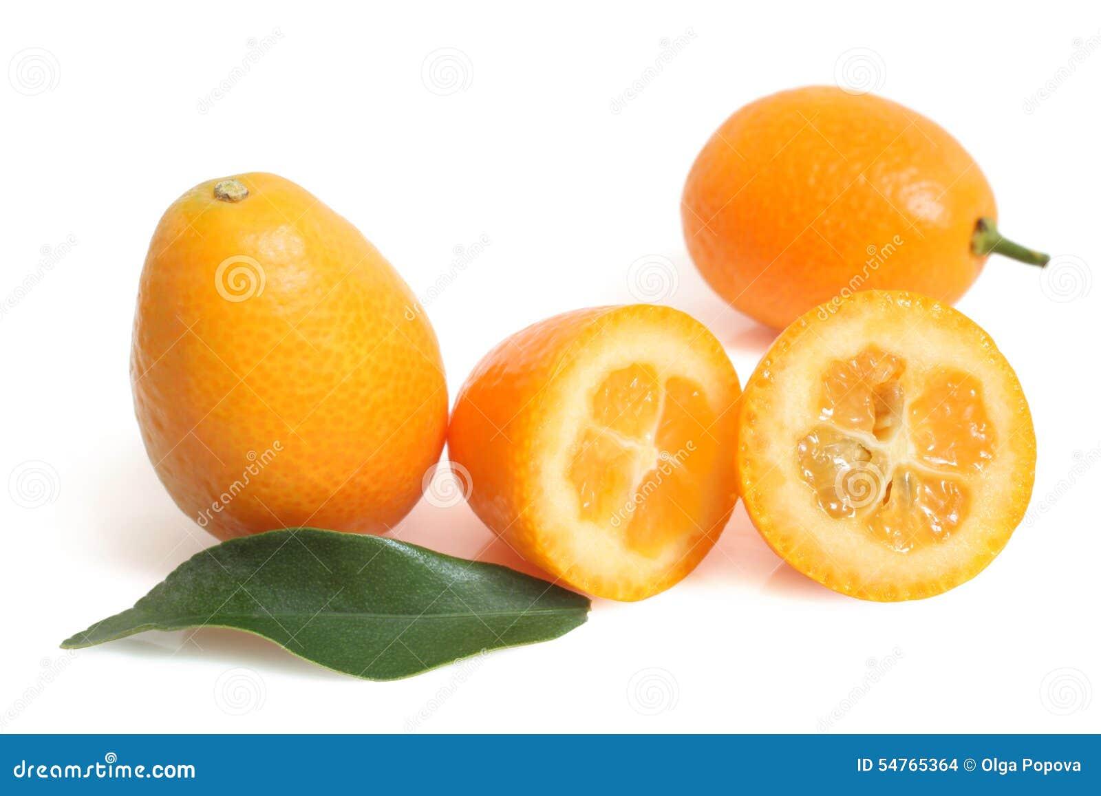 Kumquat com folha