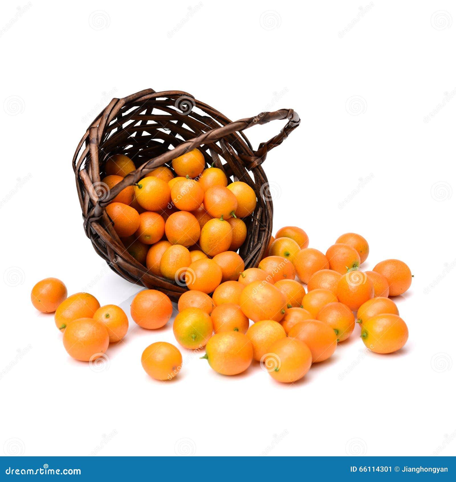 Kumquat fresco