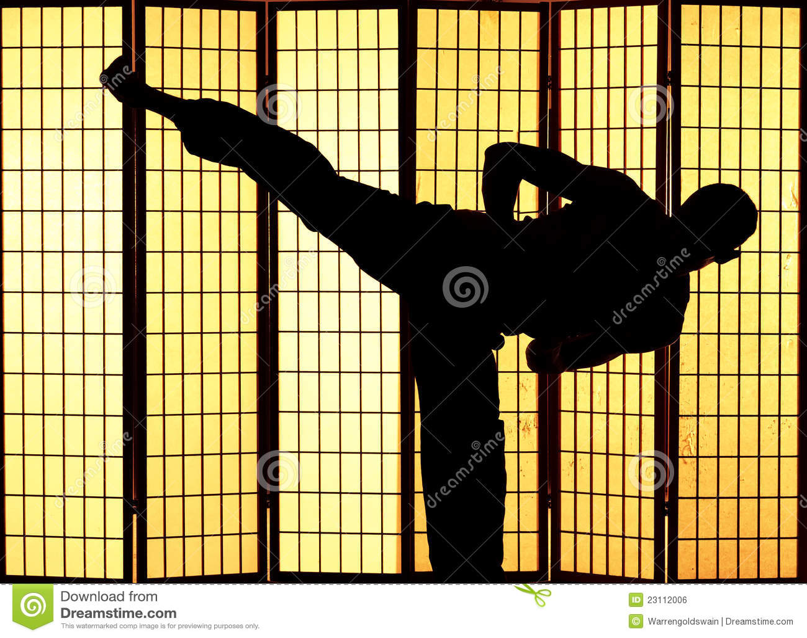 Kung fu kopnięcie