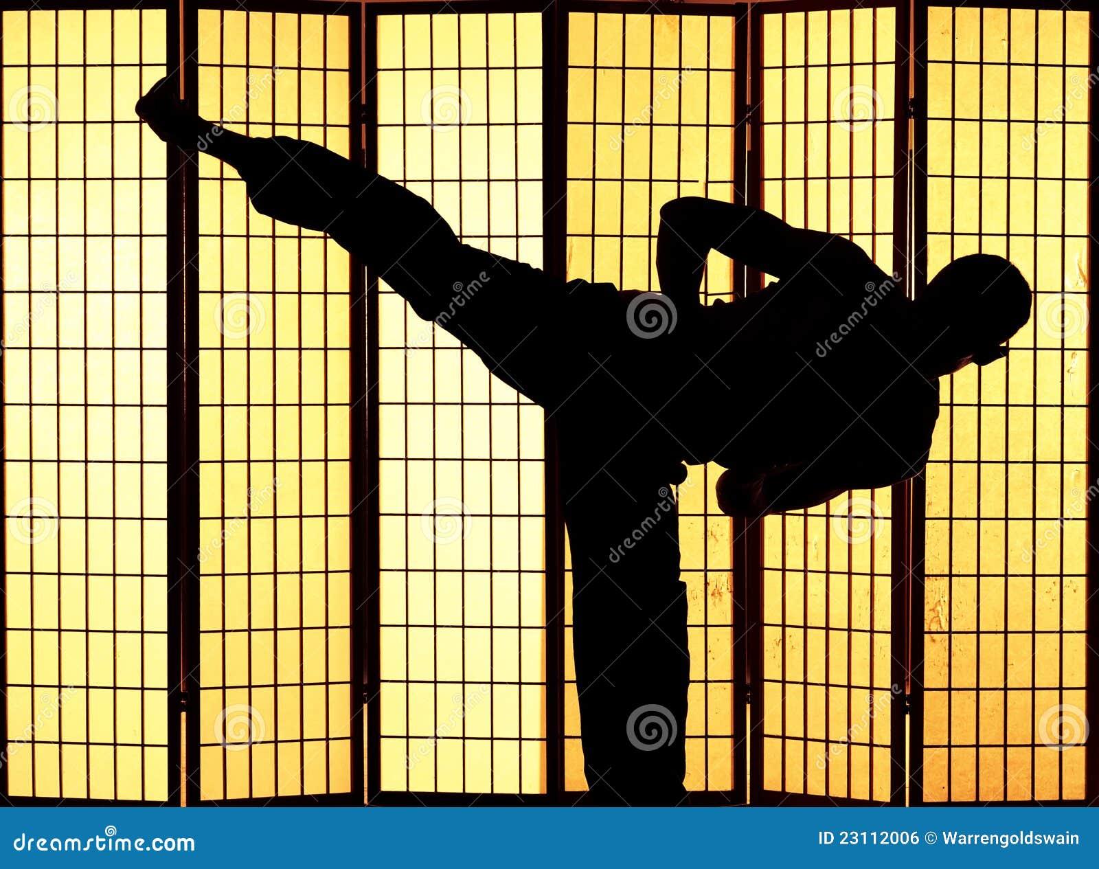Kung fu Stoß