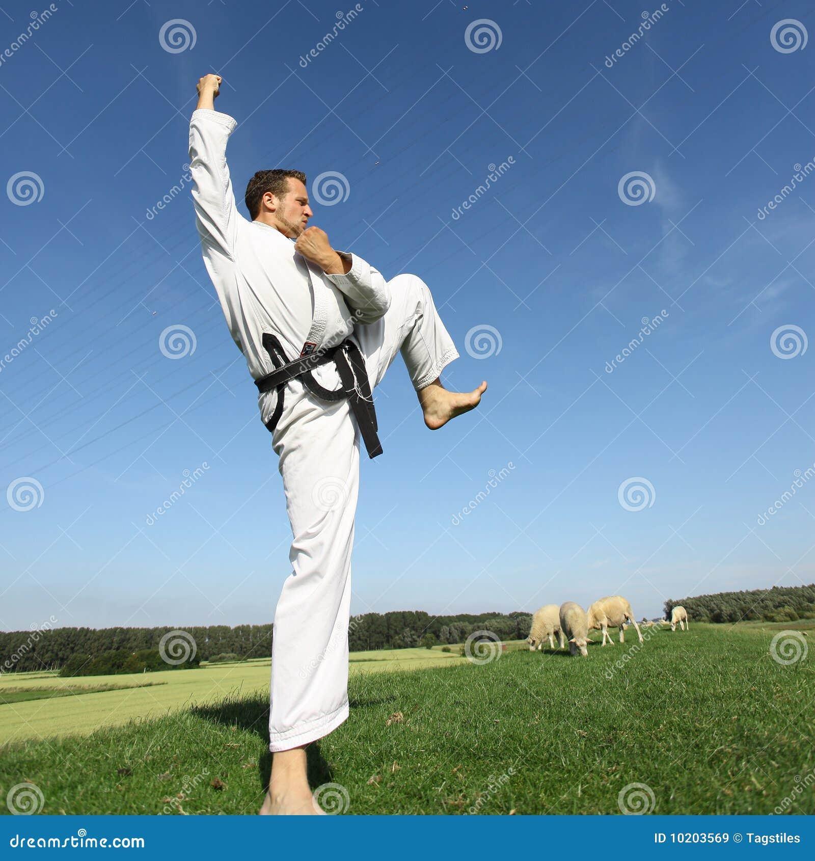 Download Kungfu stockbild. Bild von mann, hoch, athlet, gang, gesund - 10203569