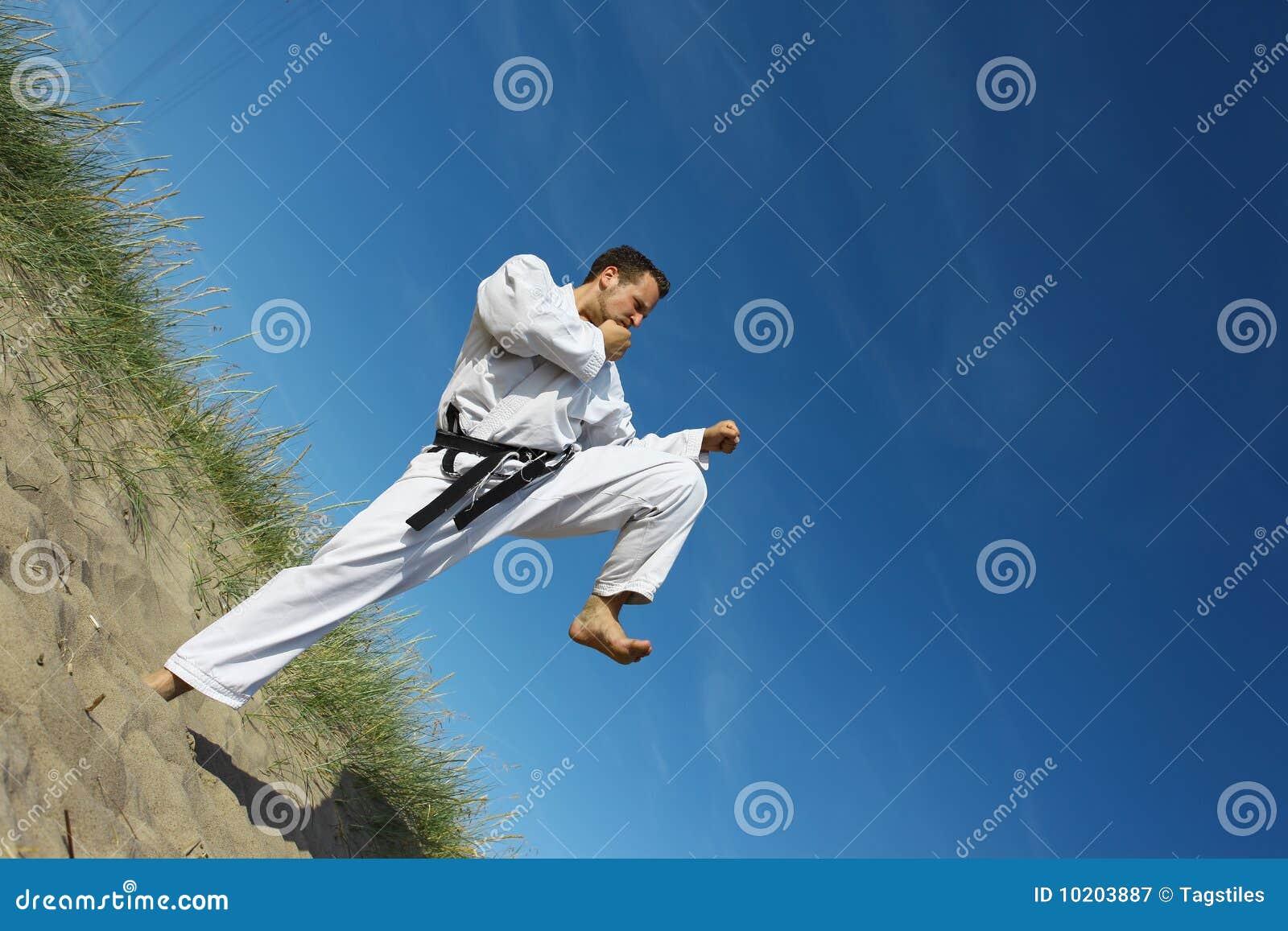 Download Kungfu stockbild. Bild von karate, ausbilder, künste - 10203887
