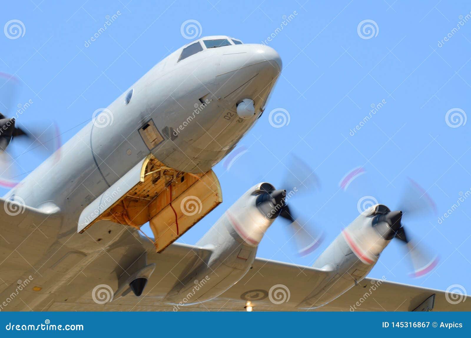 Kunglig nyazeeländsk flygvapenLockheed P-3 Orion nivå