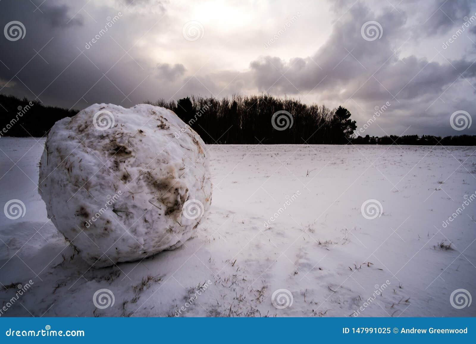 Kunnen wij een sneeuwmens bouwen?