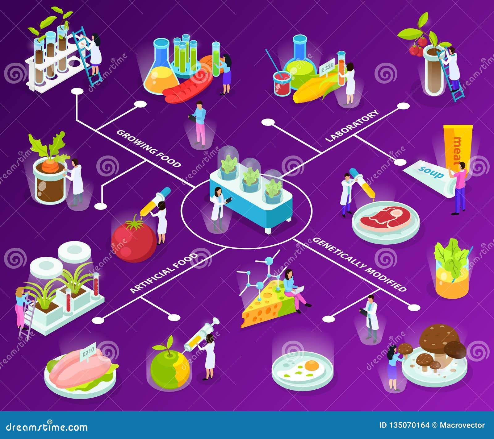 Kunstmatig Voedsel Isometrisch Stroomschema