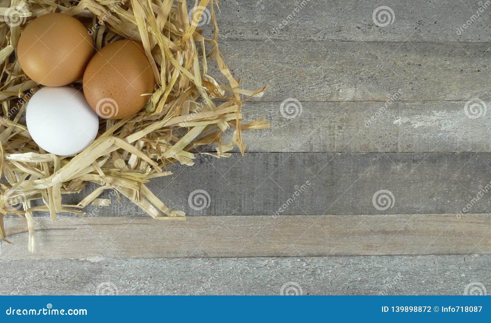 Kurczaków jajka w słomie gniazdują z burlap nad drewnianym tłem