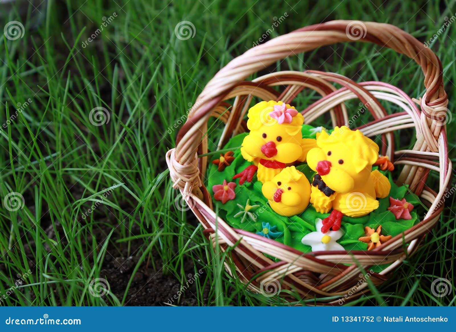 Kurczak koszykowa trawa