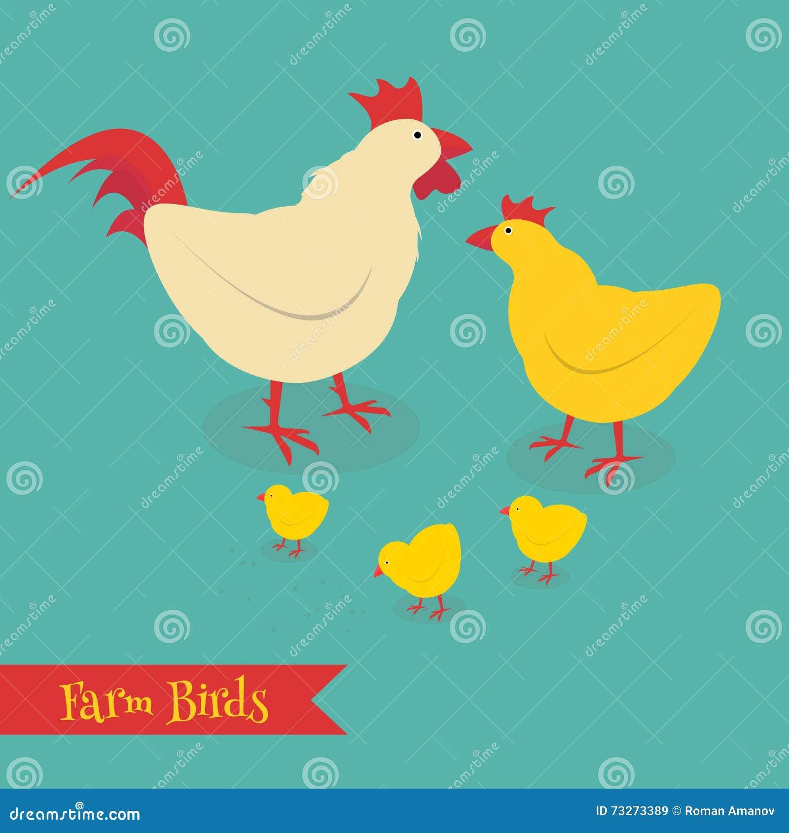 Kurczak matki i chuk dzieciaka ilustracja Kreskówka kurczaka ptak odizolowywający na tle