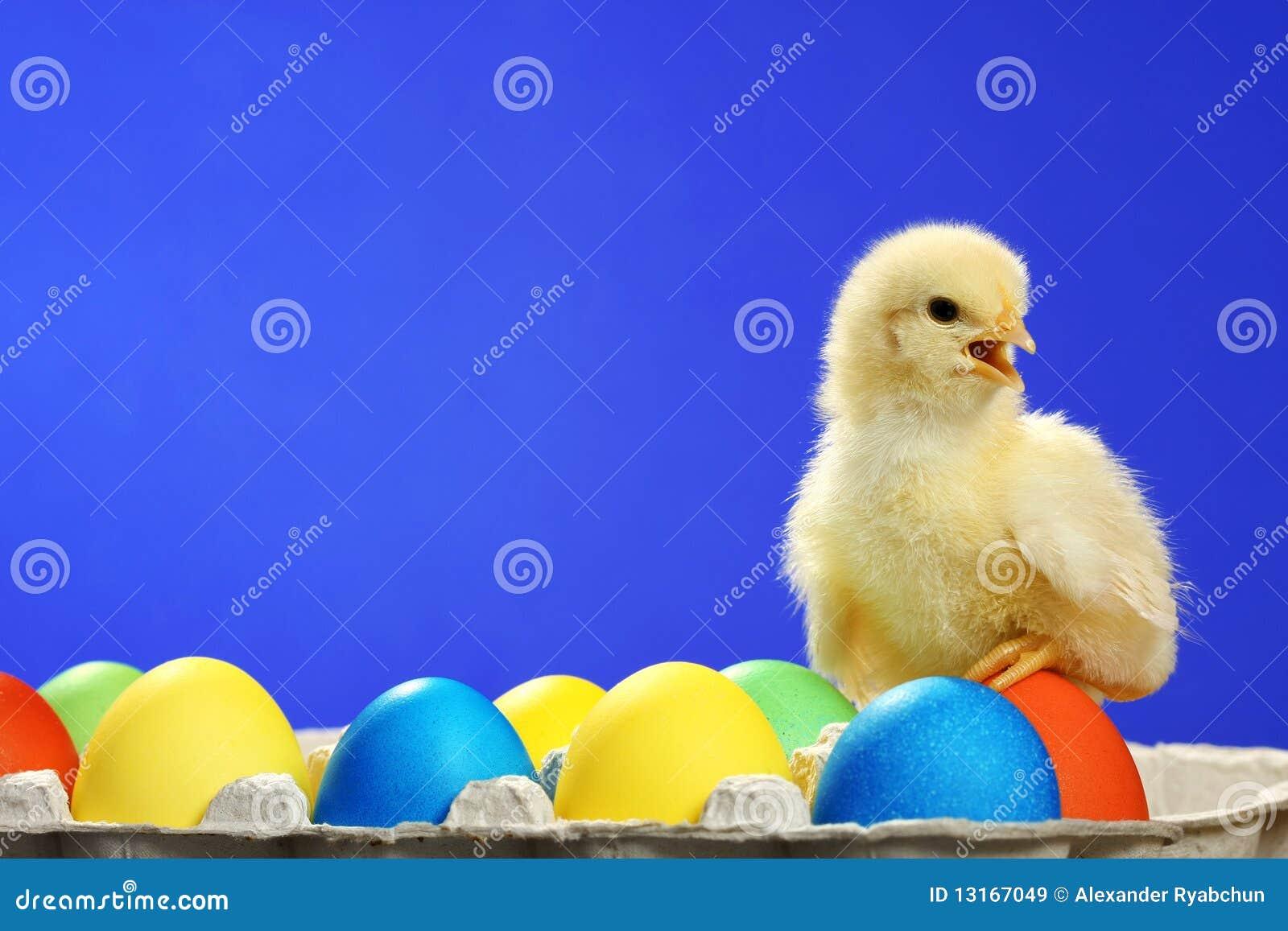Kurczaka Easter jajka mali
