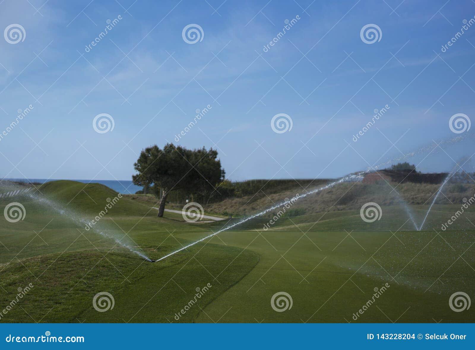 Kursowy golfowy podlewanie