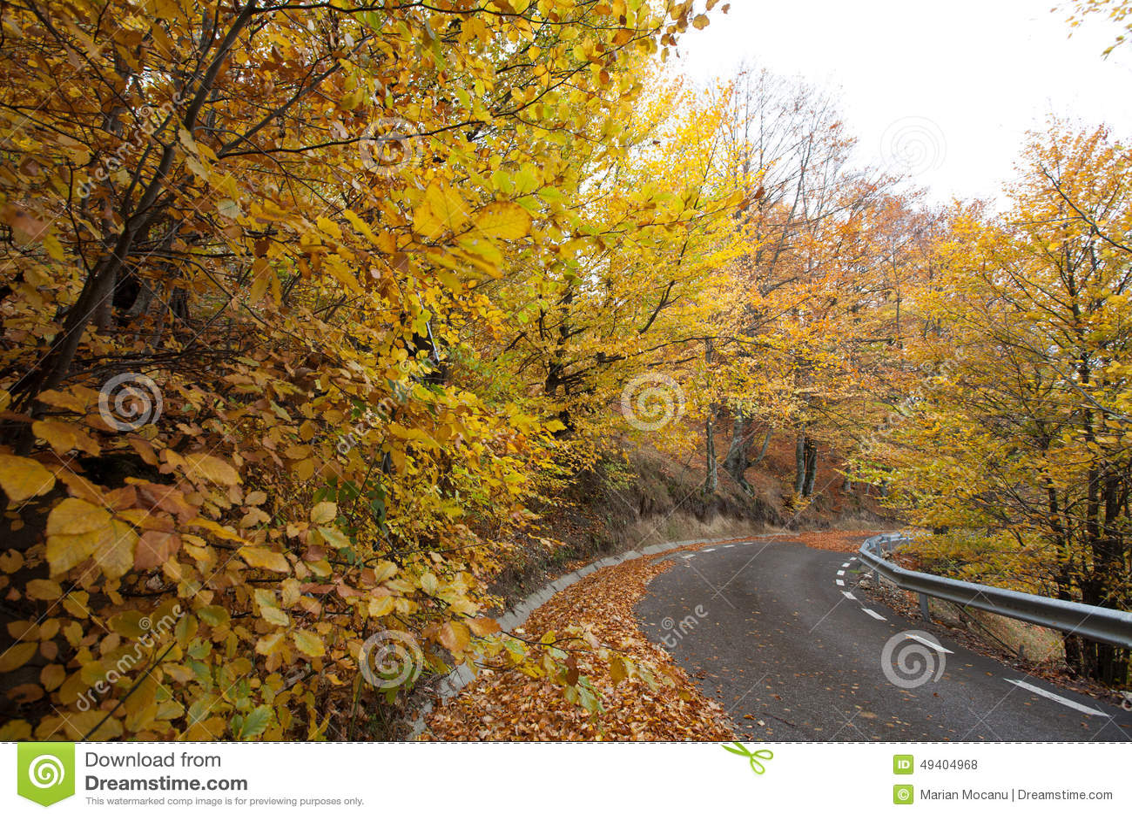 Download Kurvenreiche Straße stockfoto. Bild von zeilen, kurven - 49404968