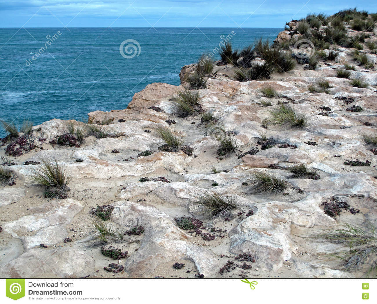 Kust- klippor