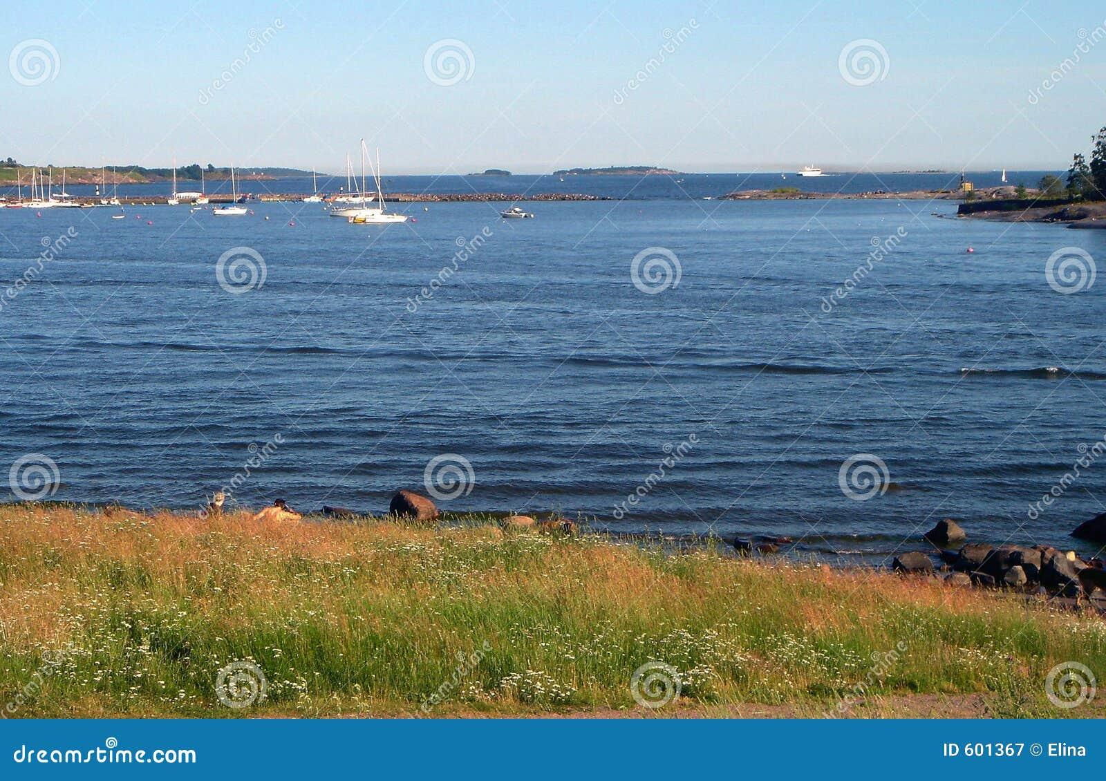 Kust van Golf van Finland