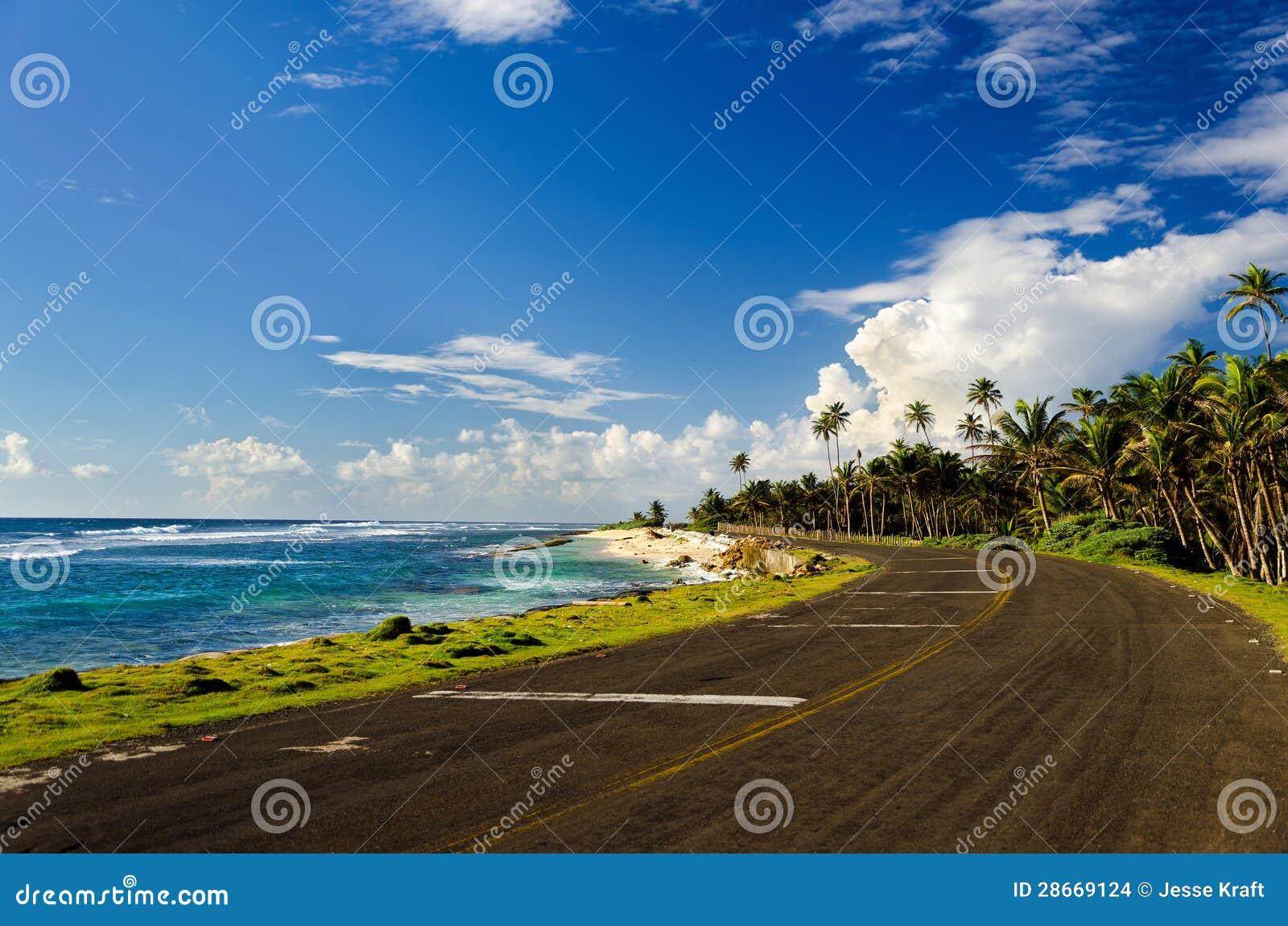 Kust Weg en Palmen