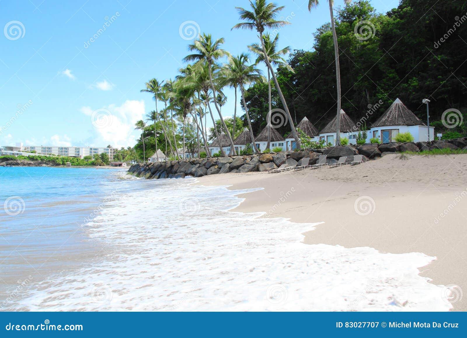 Kustbungalowwen, Guadeloupe