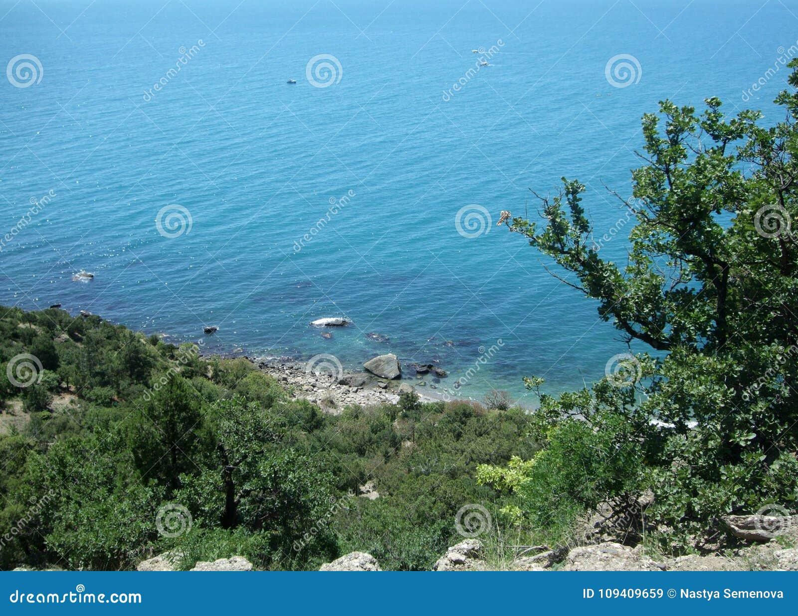 Kustlinje av havet med kullar och träd Black Sea crimea