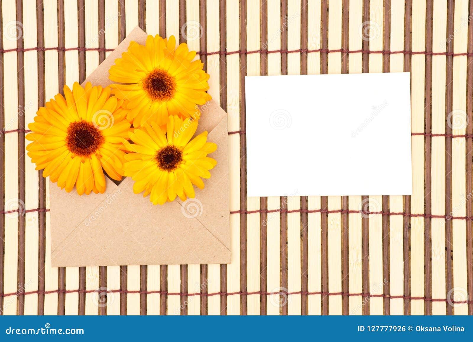 Kuvert av kraft papper med ett tomt meddelande och med härligt