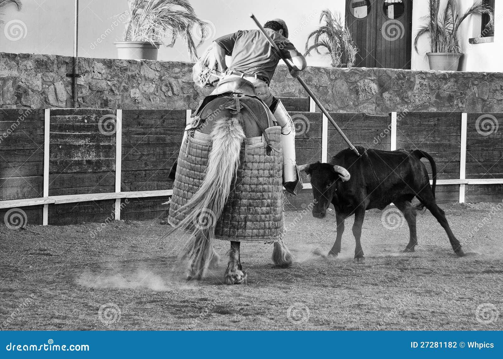 Kvigan rams lancer sens häst