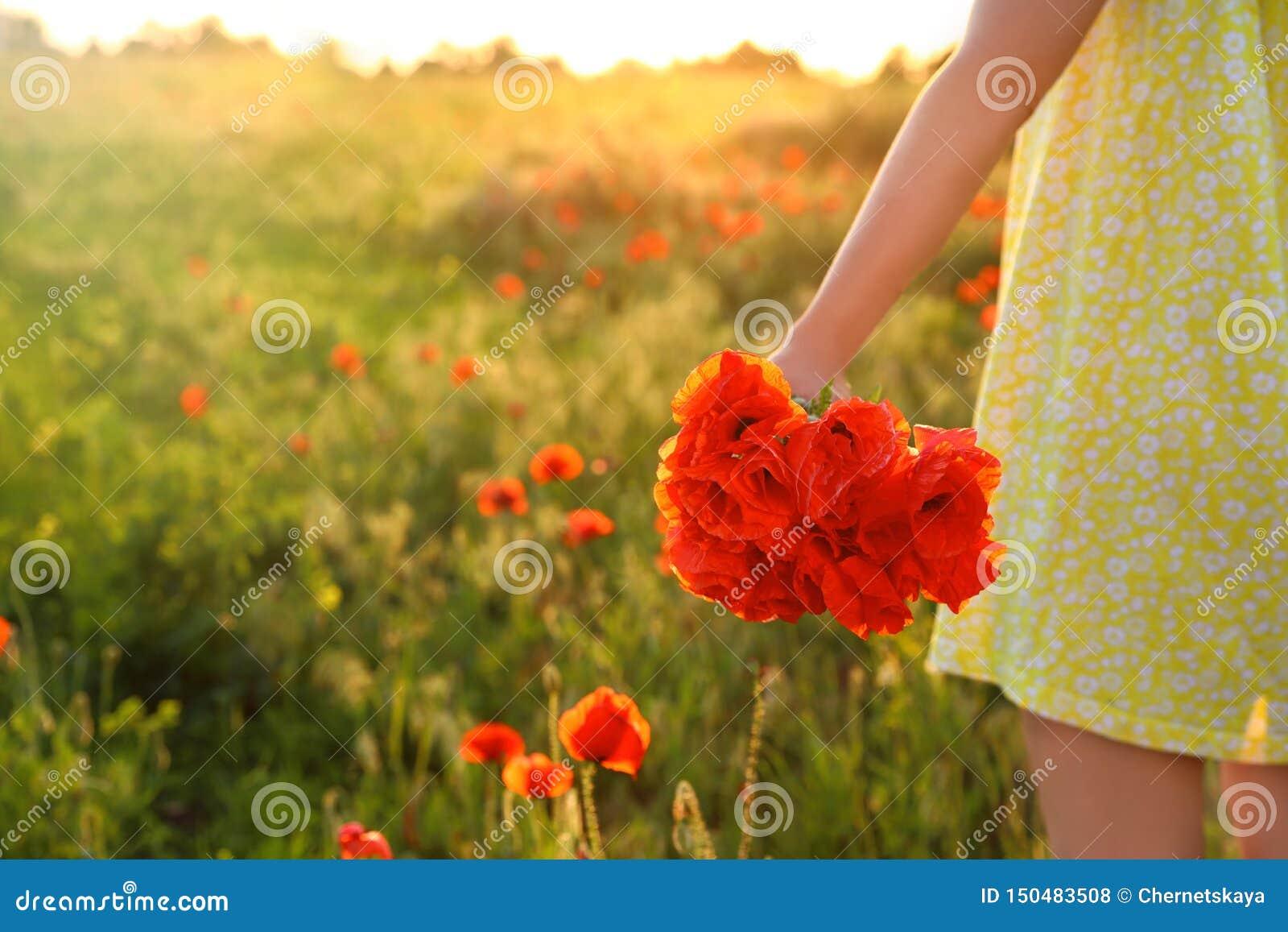 Kvinna med buketten av vallmo i fältet, closeup Utrymme f?r text