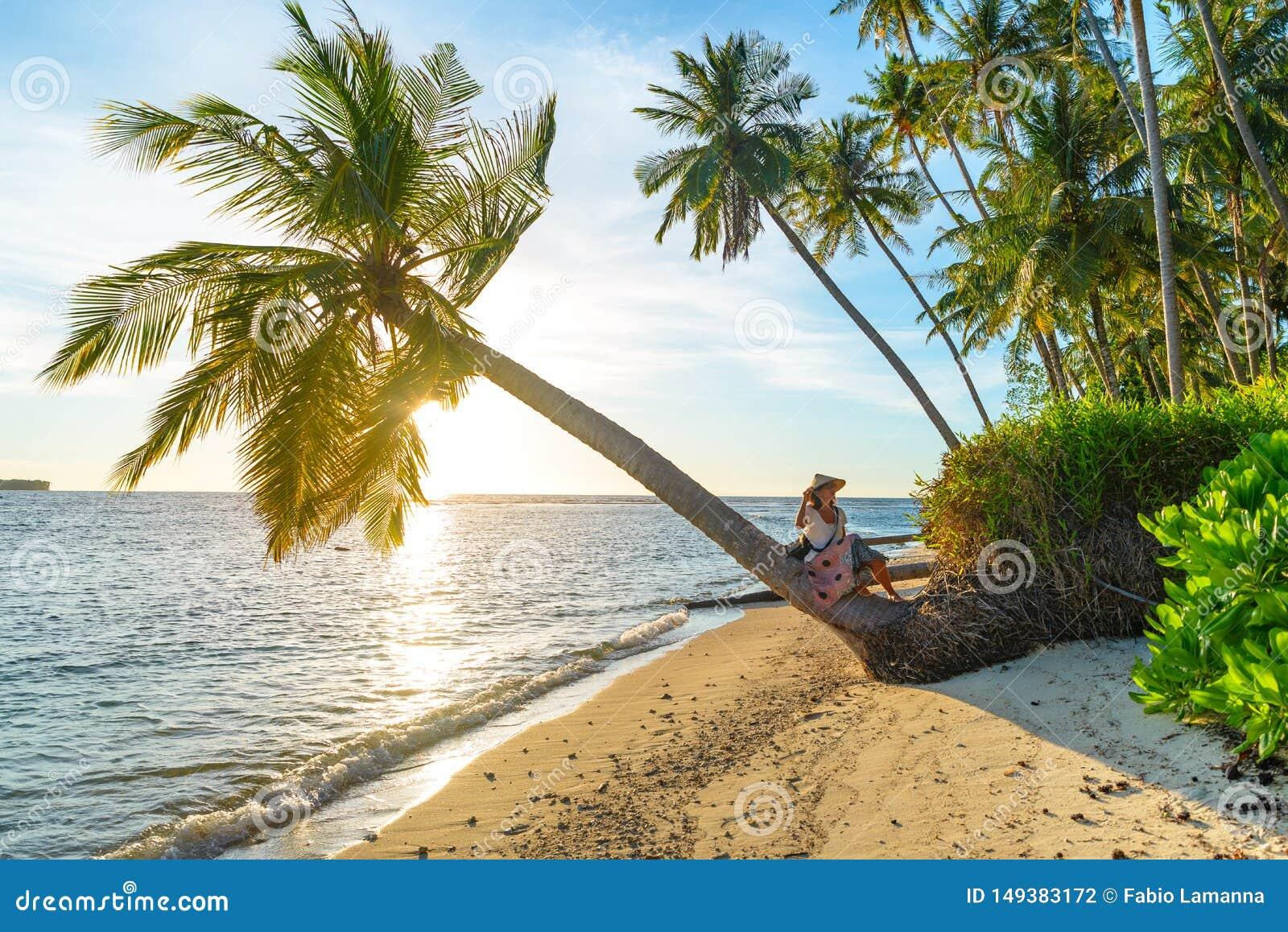 Kvinna med den traditionella asiatiska hatten som kopplar av p? den tropiska stranden som sitter p? kokosn?tpalmtr?det i sunburst