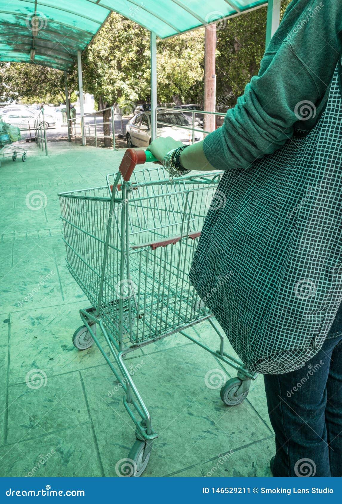 Kvinna som b?r en supermarketsp?rvagn