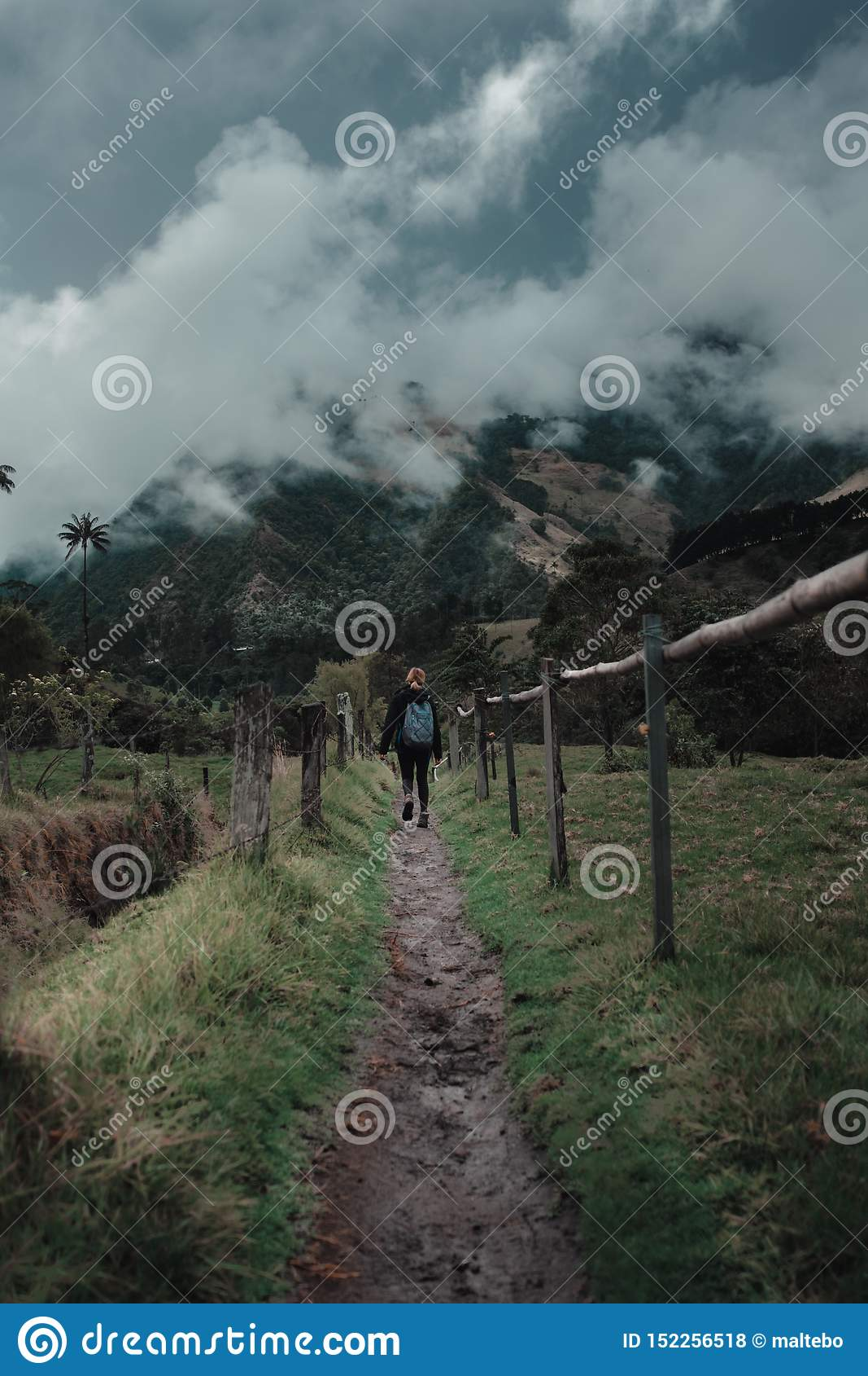 Kvinna som fotvandrar till och med ett bergsområde
