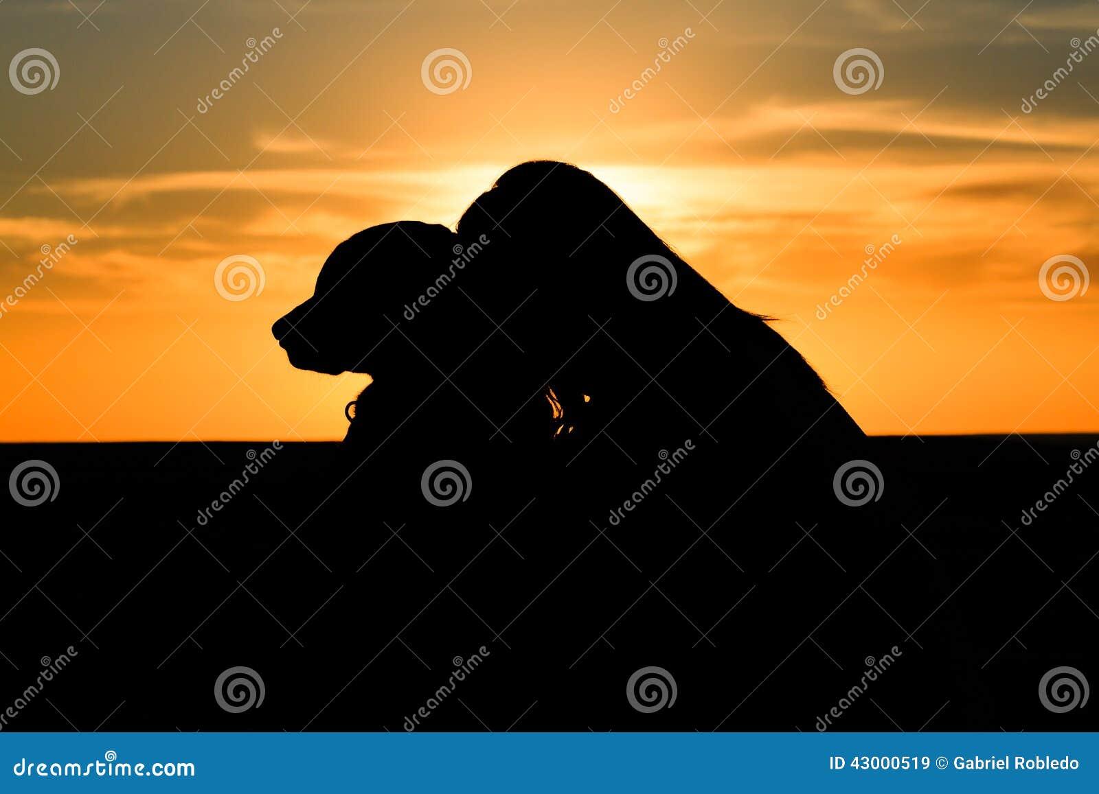 Kvinnahundkontur