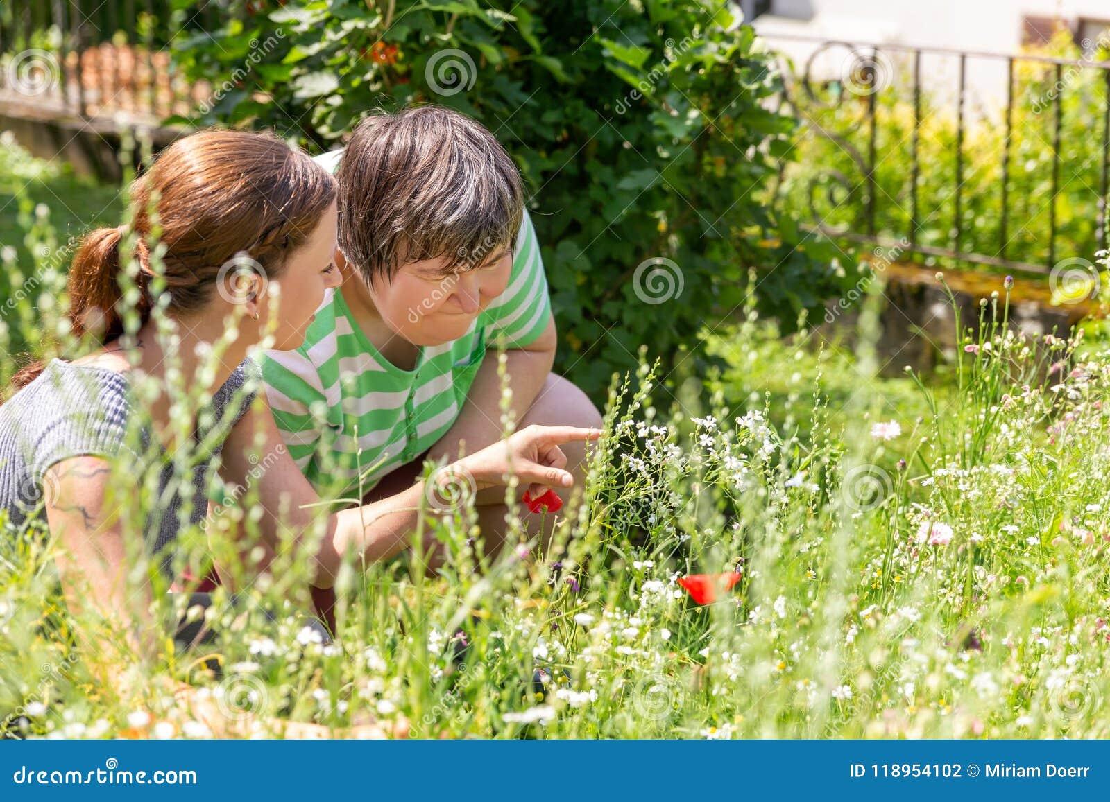 Kvinnan visar en mental rörelsehindrad kvinna en blomma