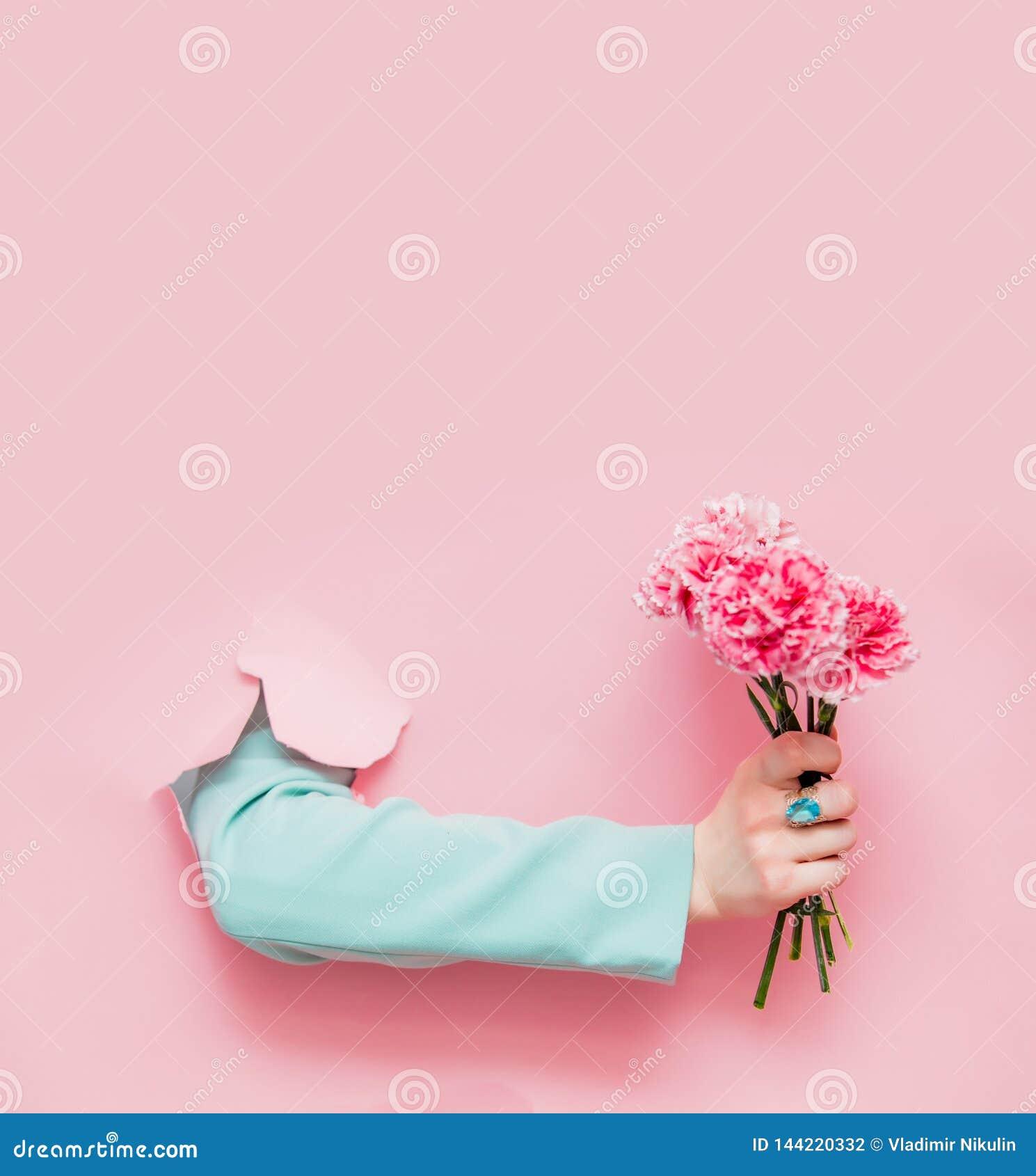 Kvinnlig hand i klassiskt bl?tt omslag med nejlikablomman