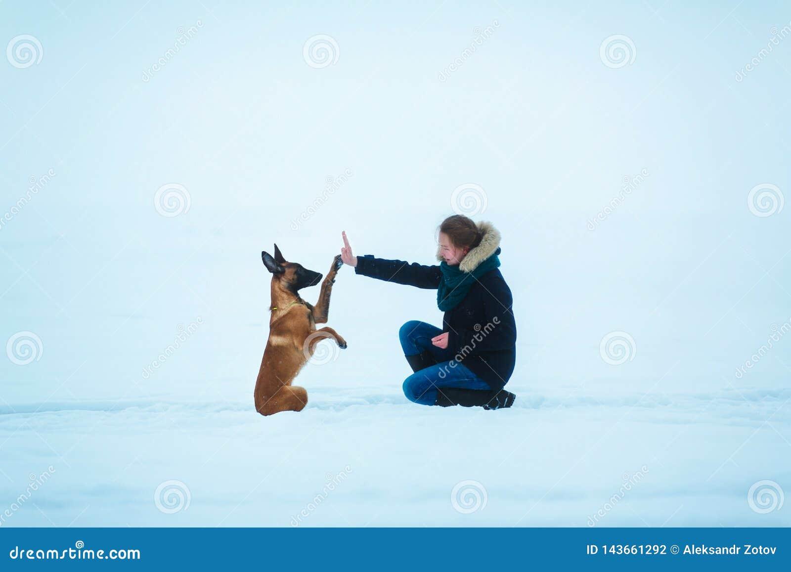 Kvinnor och belgisk herde Dog i vinter snowing för bakgrund Djupfryst skog