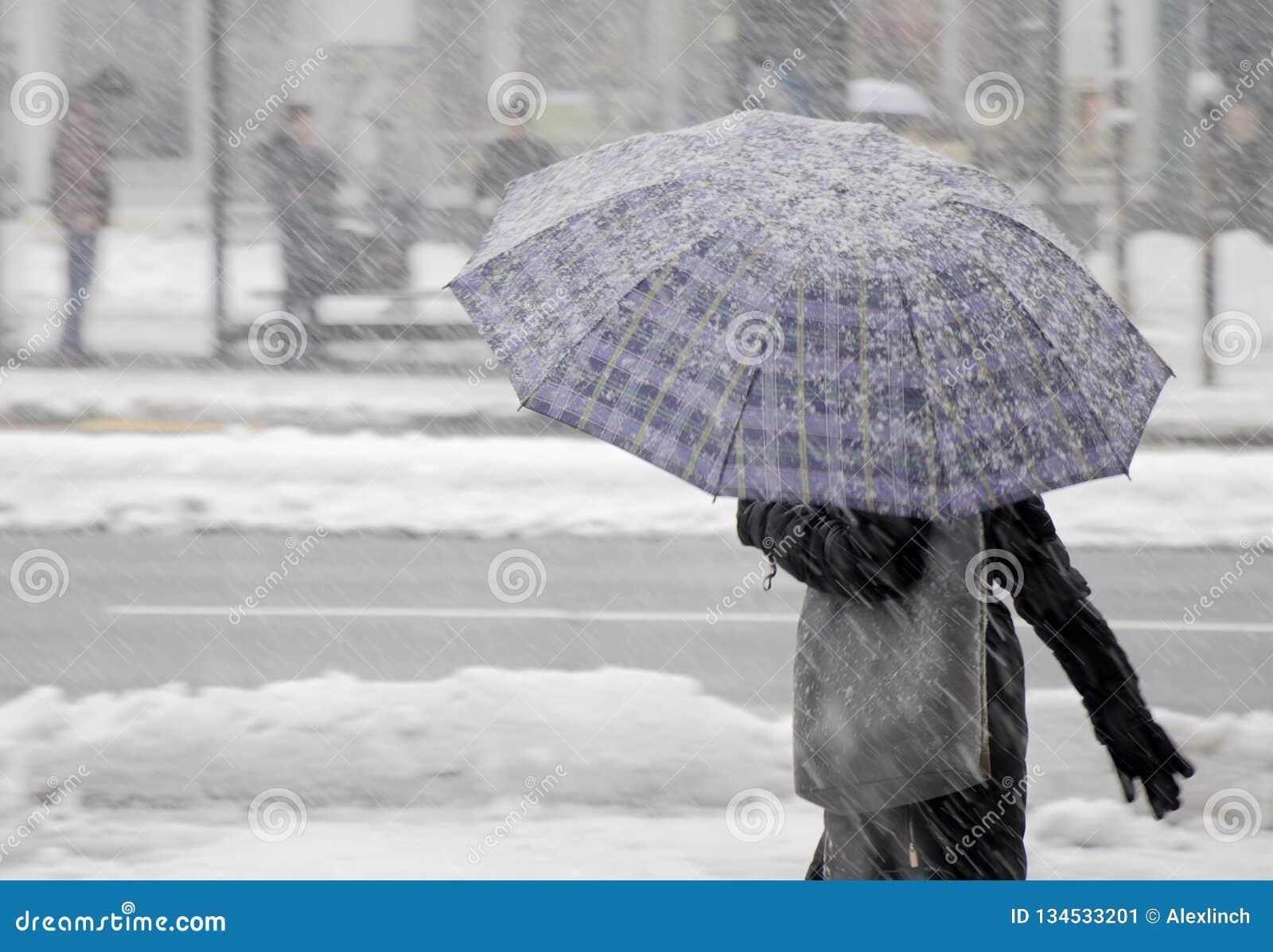 Kvinnor som en går under paraplyet i tungt snöfall