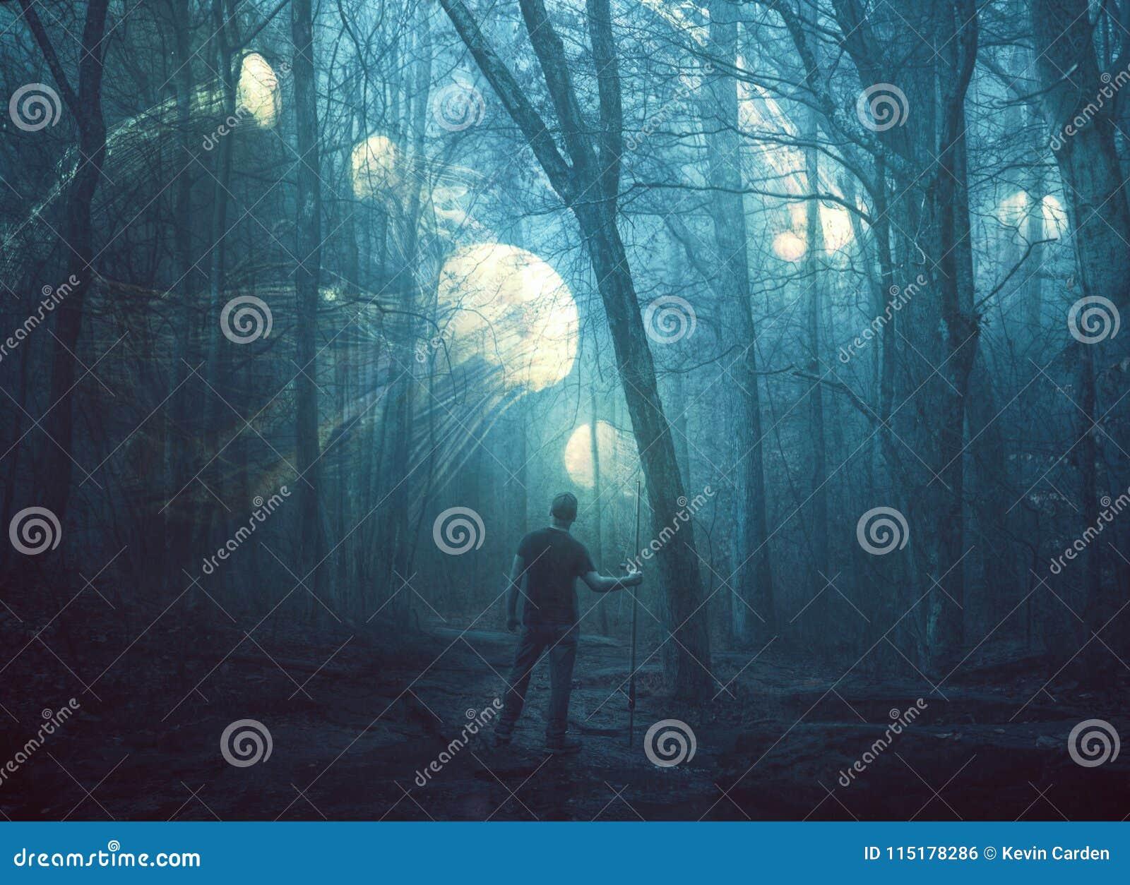 Kwallen in een donker bos