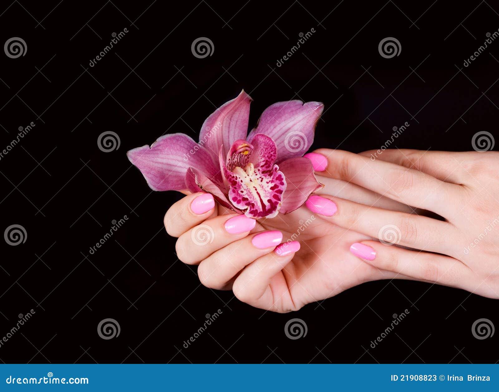 Kwiatów gwoździe