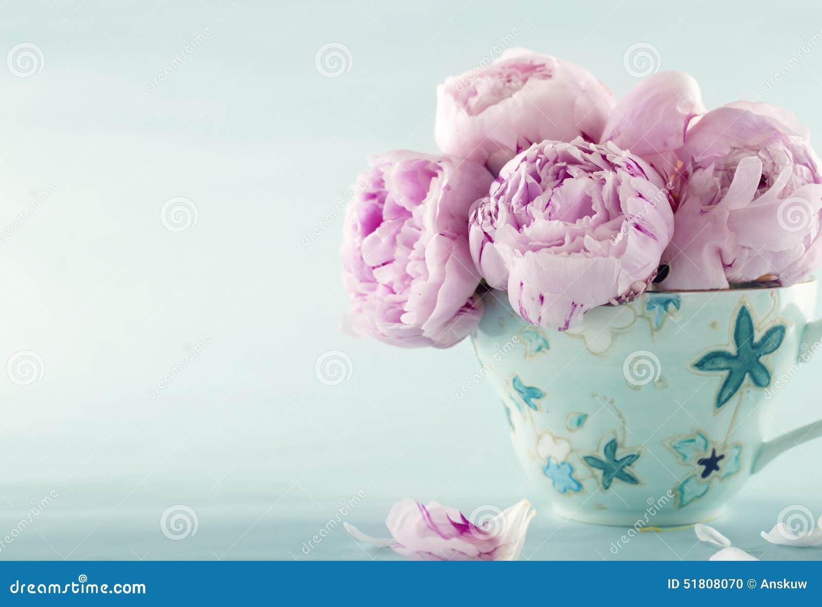 Kwiatów peoni menchie
