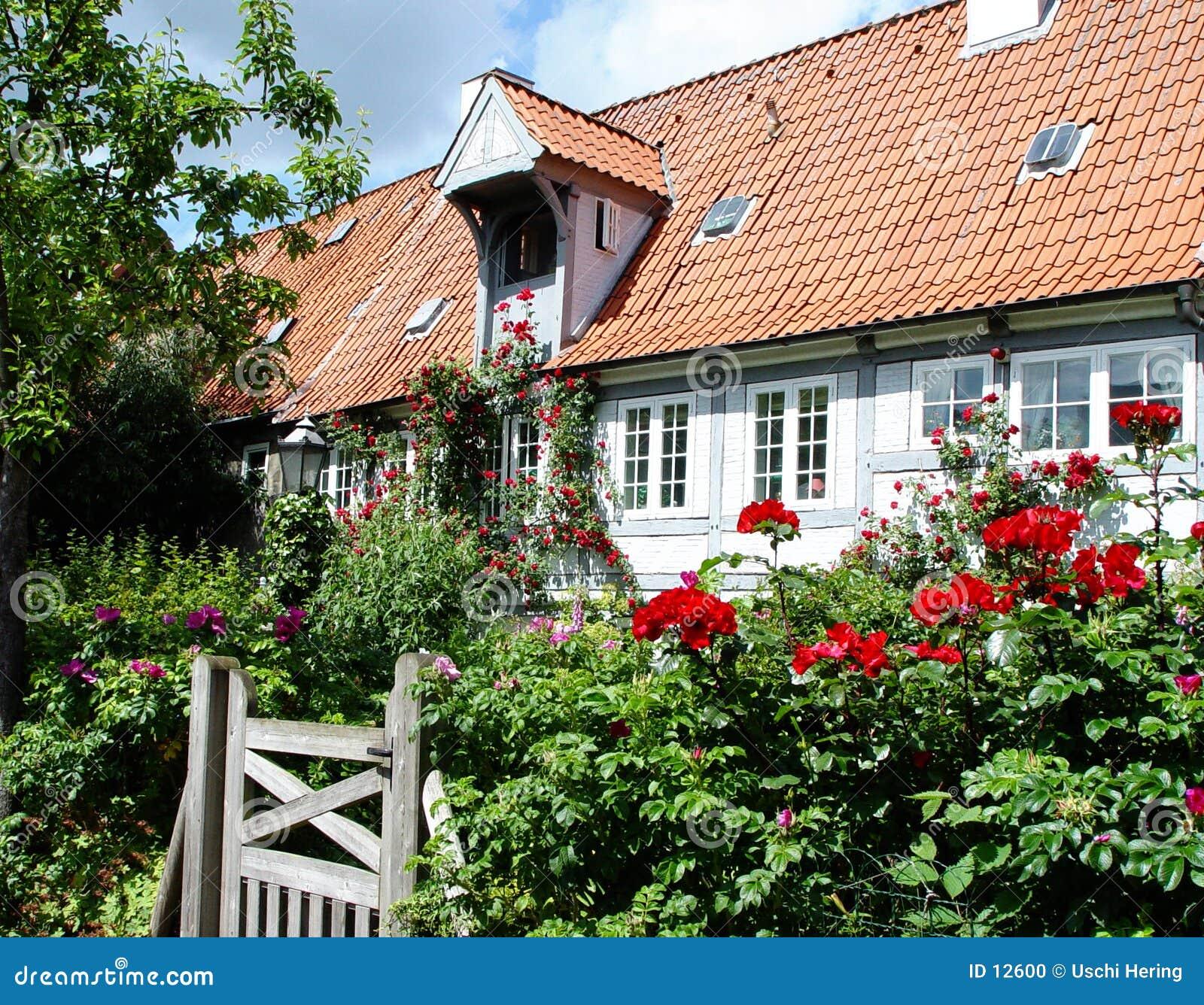 Kwiat domu krajobraz
