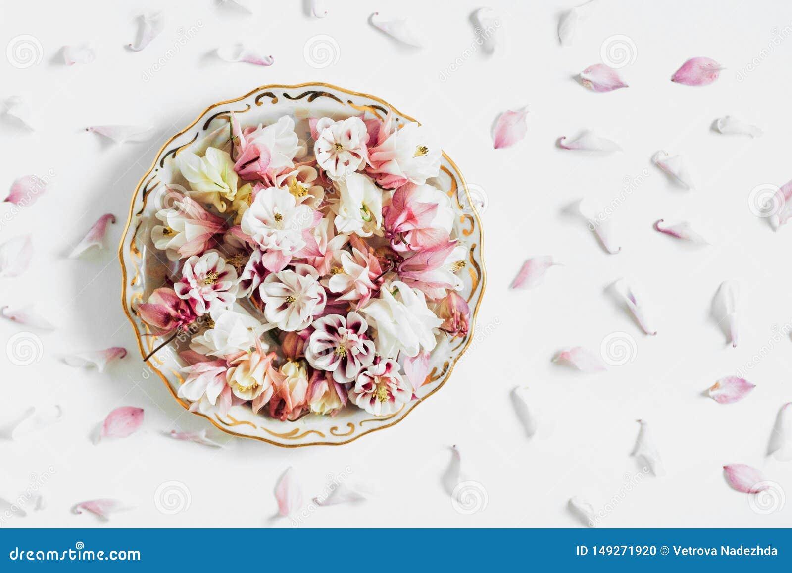 Kwiat matrycuje sk?ad, mieszkanie nieatutowy