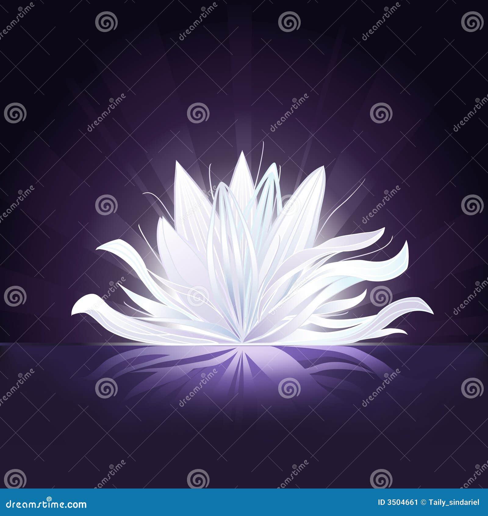 Kwiat rozjarzona wody
