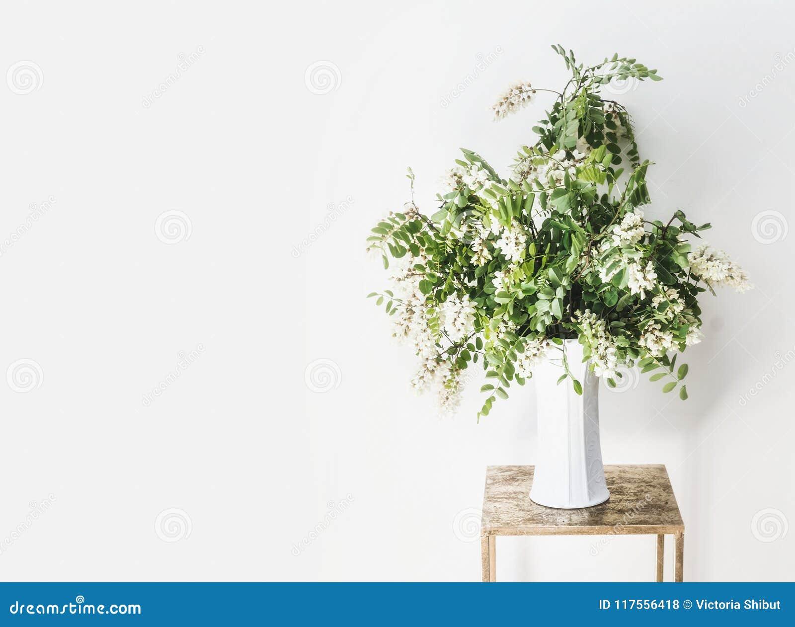 Kwiat wiązka z okwitnięciem akacja rozgałęzia się w wazie przy biel ścianą Prosty Wewnętrzny projekt i pomysły