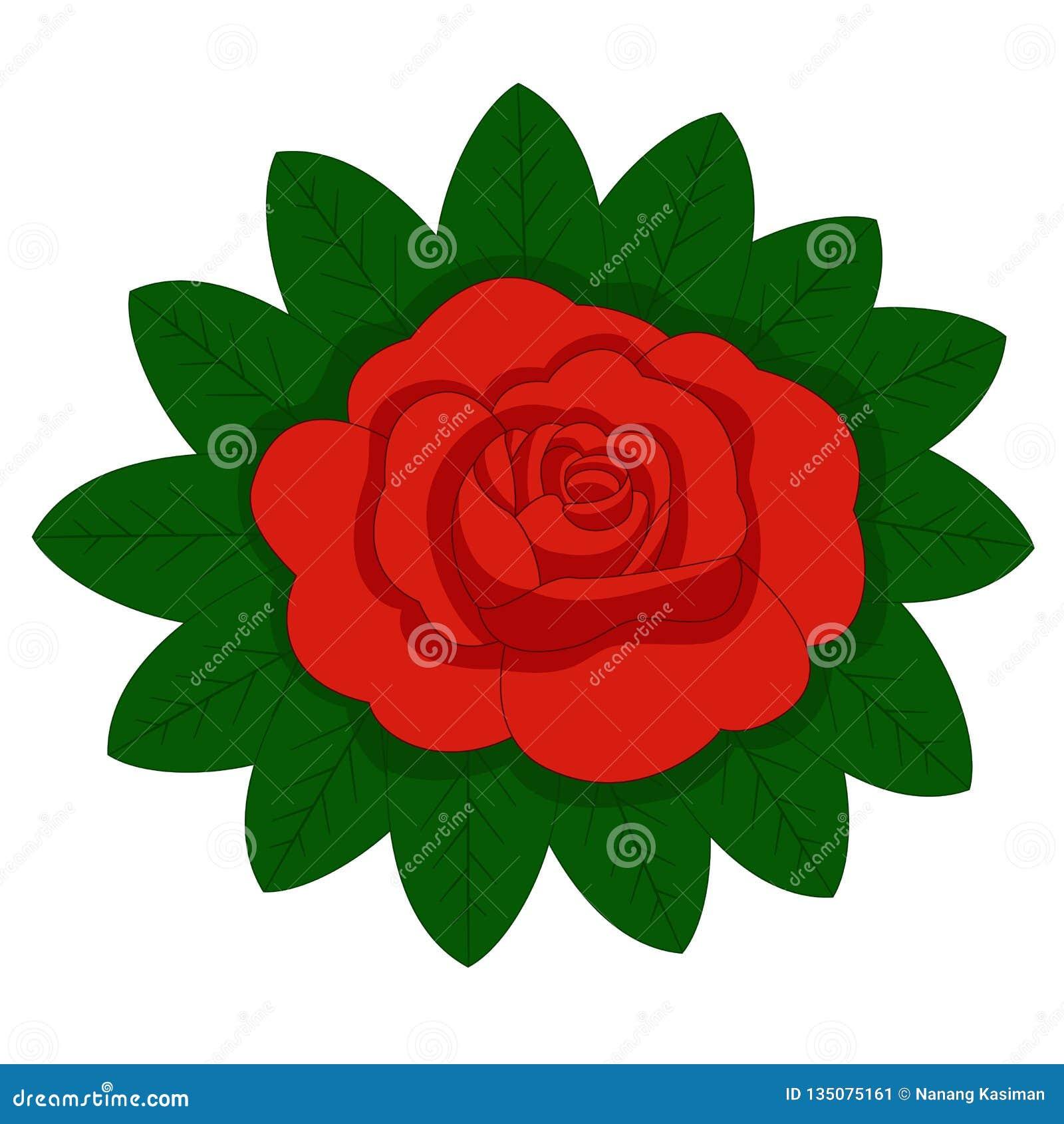 Kwiat wzrastał, czerwień pączki i zieleń liście pojedynczy białe tło również zwrócić corel ilustracji wektora