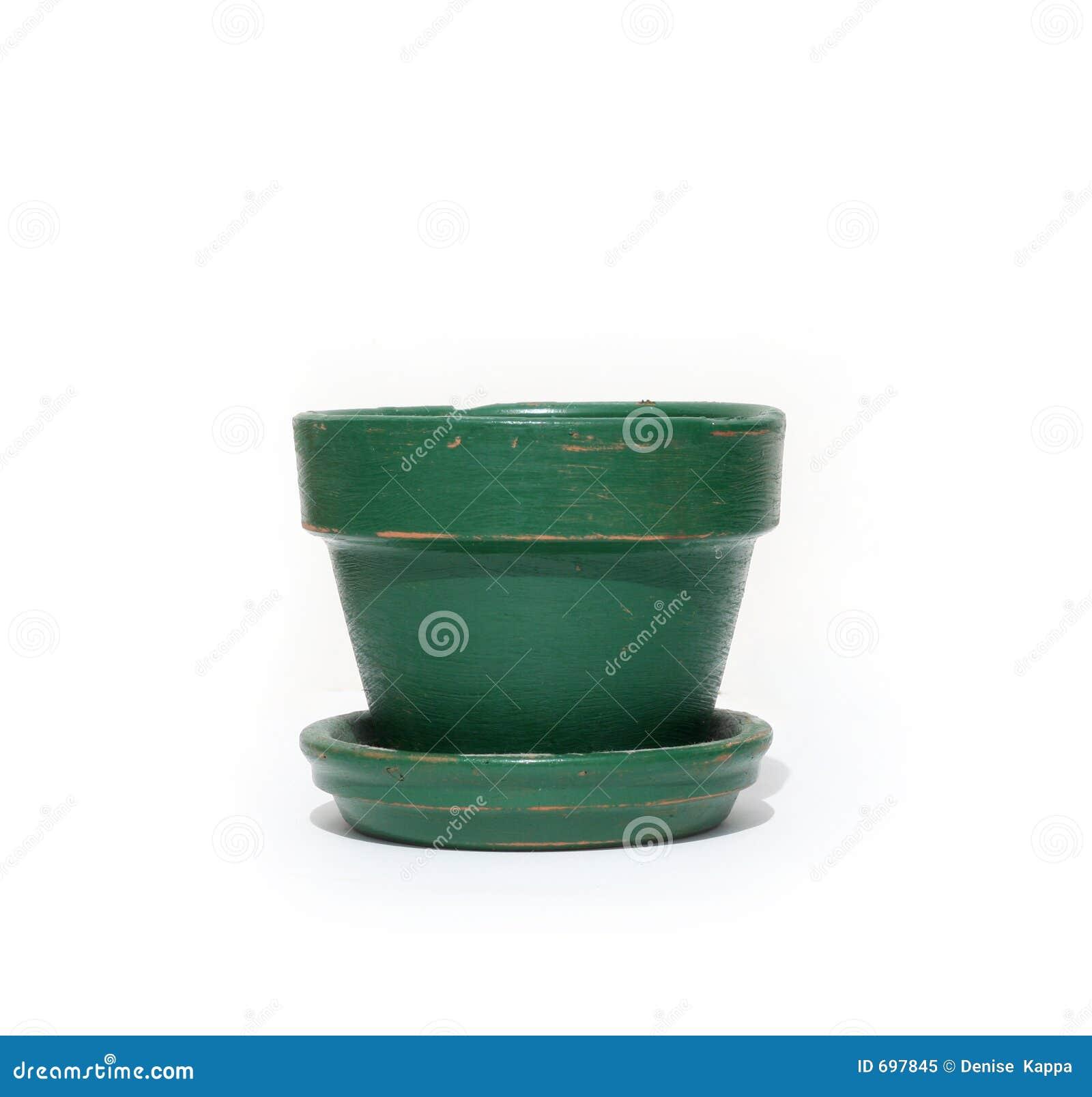 Kwiat zielone zioło
