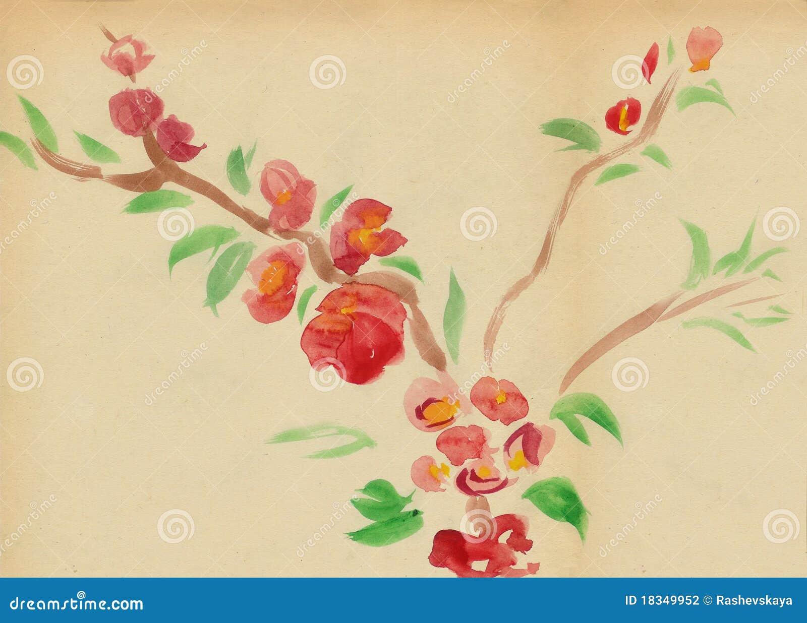 Kwiatonośna śliwka