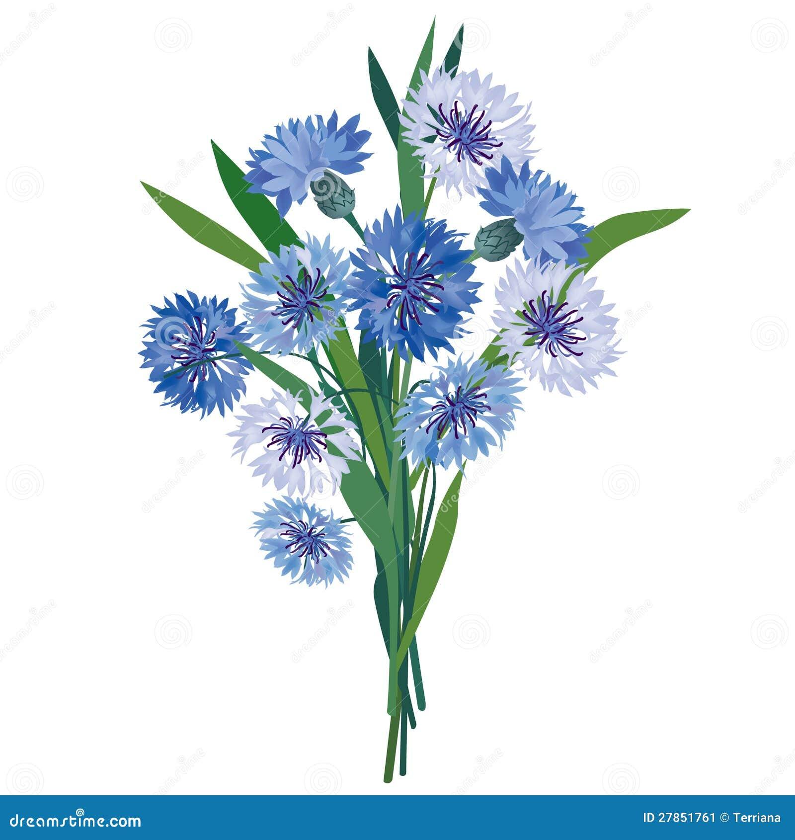 Kwiatu błękitny łąkowy bukiet.