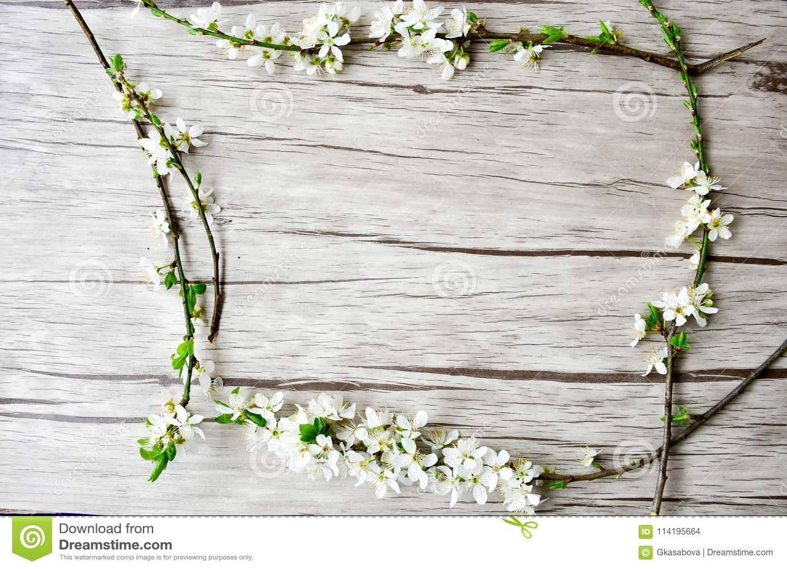 Kwiaty azalii blisko dof płytkie pojawi się kwiat