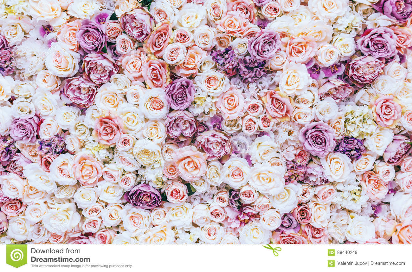 Kwiaty izolują tło z zadziwiającymi czerwonymi i białymi różami, Ślubna dekoracja, ręcznie robiony