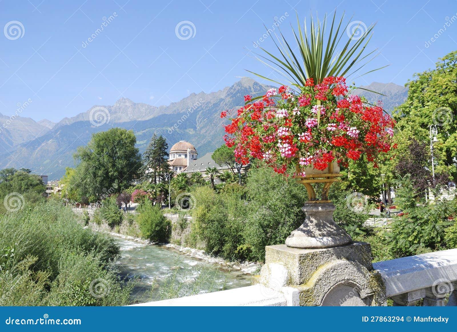 Kwiaty w Meran